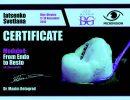 Яценко сертификат